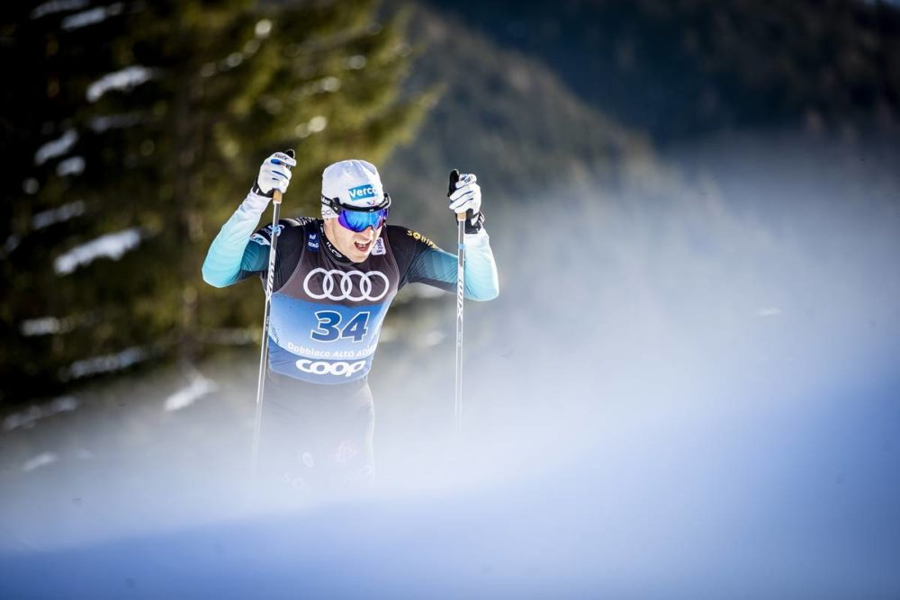 Cross-country skiing, biathlon, Nordic combined, ski jump