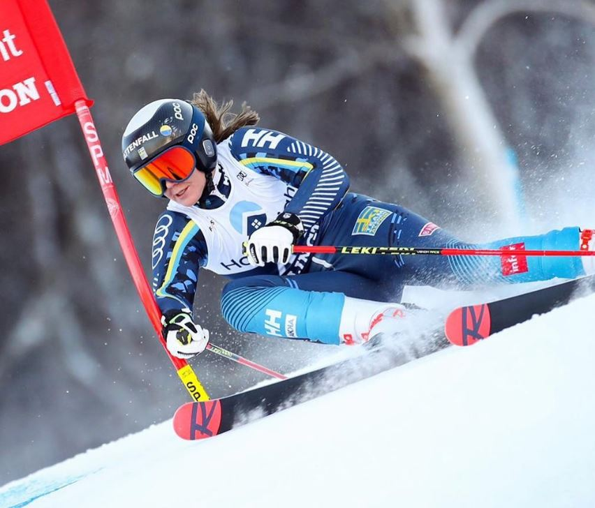 Estelle Alphand, ski alpin